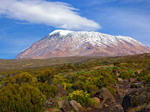 Kilimanjaro's Machame Route