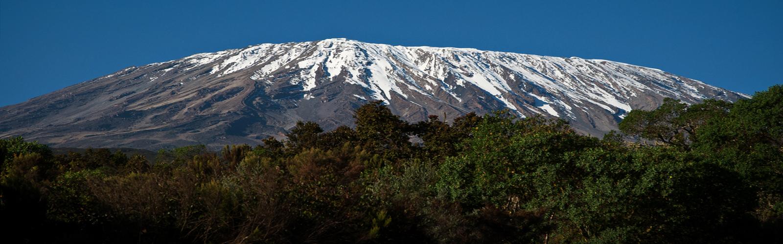Kilimanjaro's Marangu Route