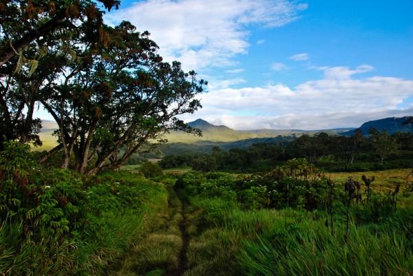 Mt Kenya Chogoria route