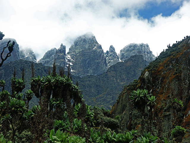 Trekking the Ruwenzori - Africa's Tallest Mountains