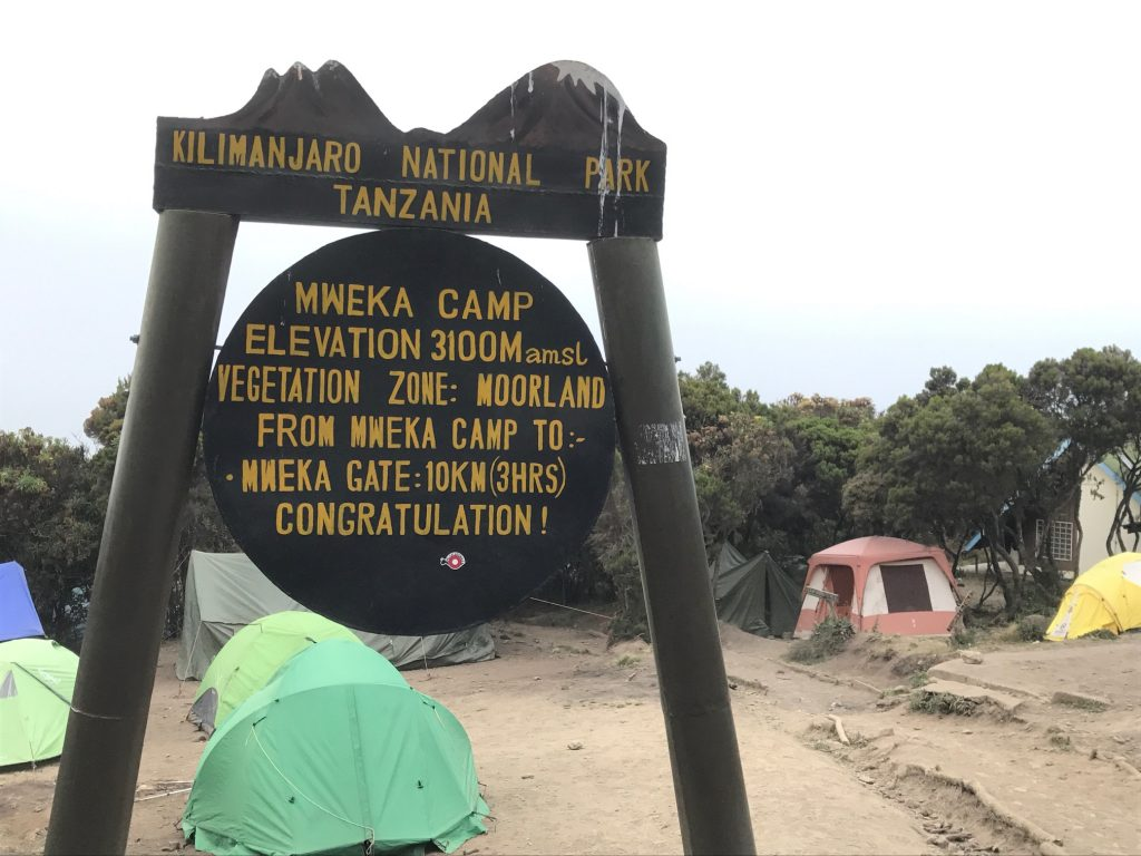 Back to your final campsite on the Lemosho Route