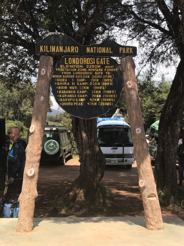 What to Expect for the Lemosho Route on Mt. Kilimanjaro